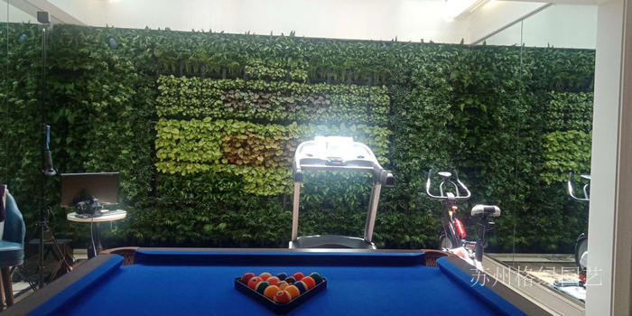 完全长开了的植物墙